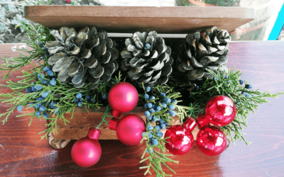 Crăciunul la Hanul Hora Românească
